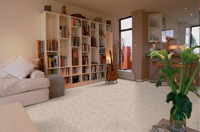 Mohawk Carpeting: Earthly Charm