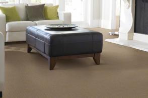 Shaw Carpet: Impressionism