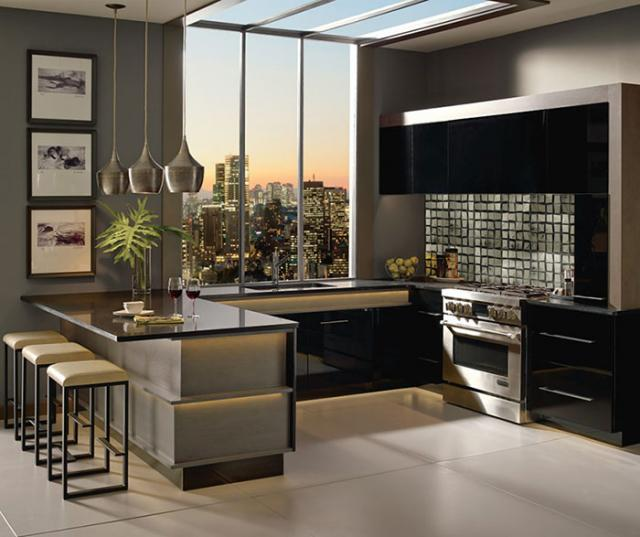 Contemporary Acrylic Kitchen Cabinets in Black Finish