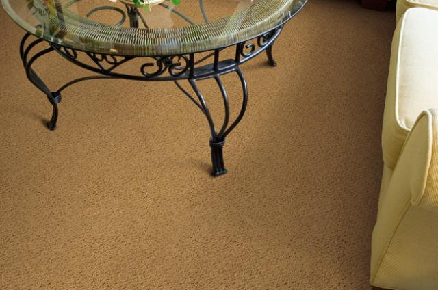 Camelot Carpet: Alluring