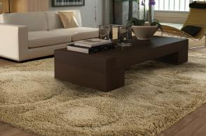 Area Rug Style 7